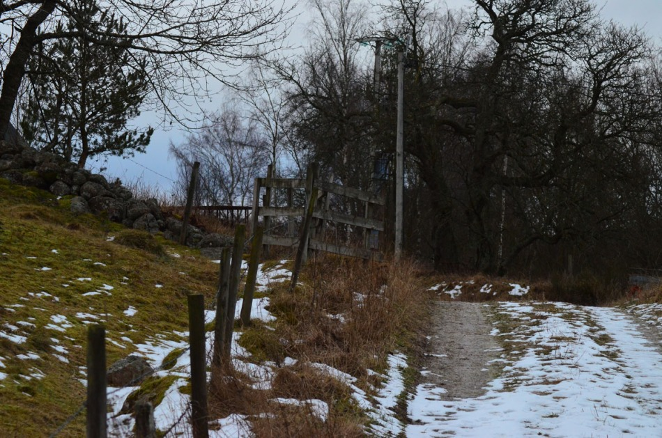 We walked in the road leading towards the lake and also the old church ruin.